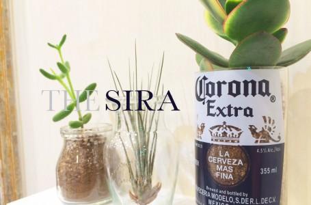 市川の美容室SIRA