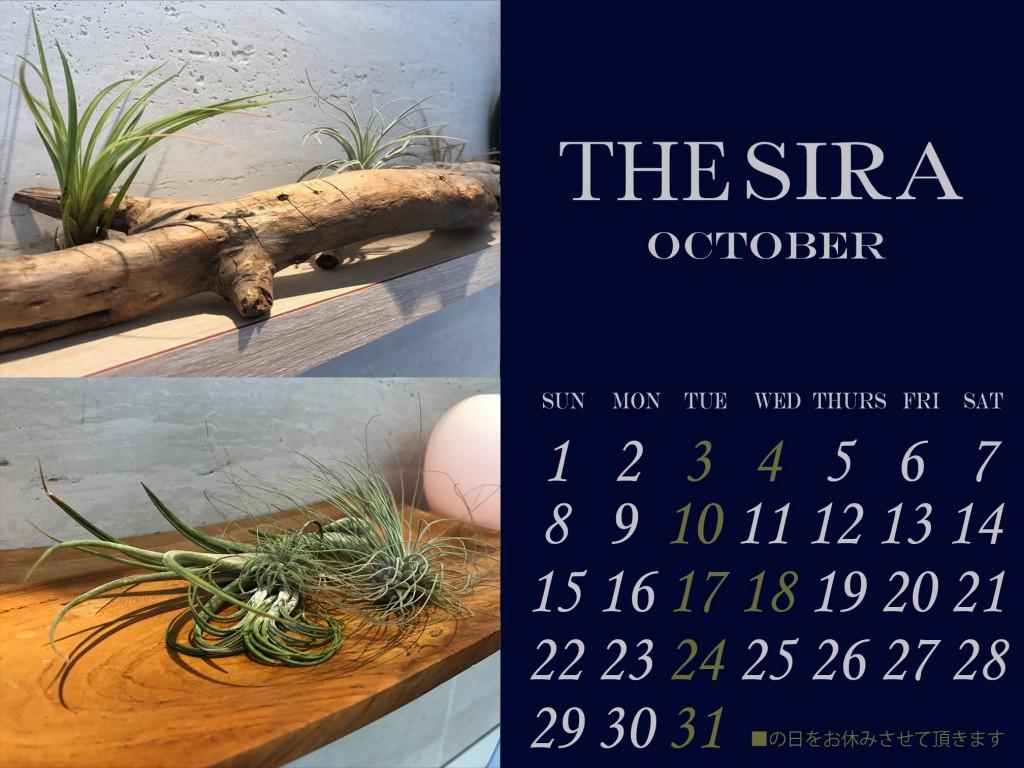 市川の美容室シラ10月の休業日