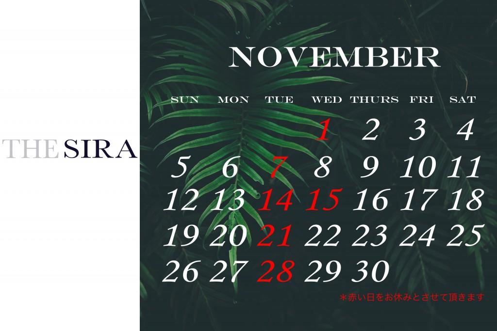 2017・11月 のコピー